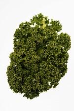 Grünkohl soll in der Hafengegend weiterhin nicht angebaut werden