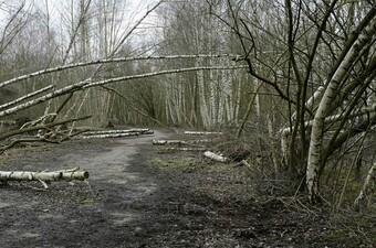 Ückendorf, stillgelegte Rennstrecke für selbstgefertigte Carts auf dem Gelände der ehem. Zeche Alma
