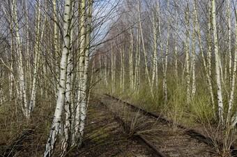 stillgelegter Güterbahnhof