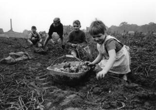 Kinder bei der Feldarbeit Ortsteil Schwerin